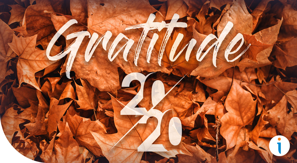 Gratitude and Business in 2020
