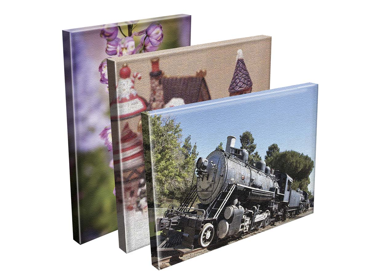 Large Format Printing - Mounted Canvas